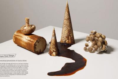 Astarism food design gestalten book