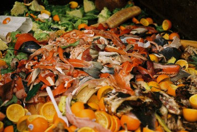 Food waste in a dumpster at GI Market. Image courtesy of Taz.