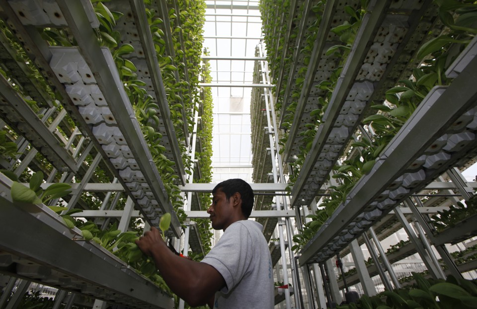 Sky Urban Vertical Farming System Wins 2015 Index Award