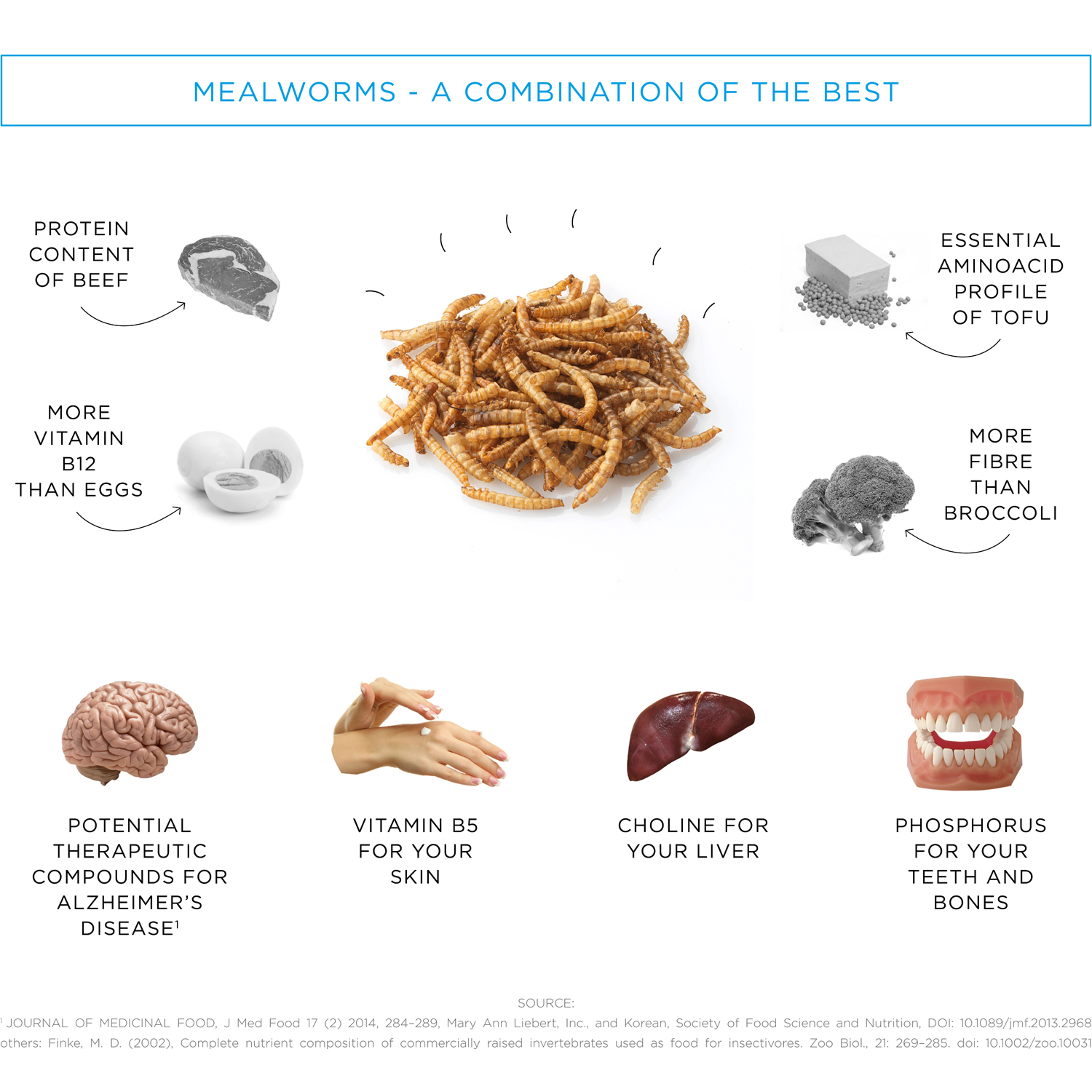 Livin-Farms-Hive-Mealworm-Facts