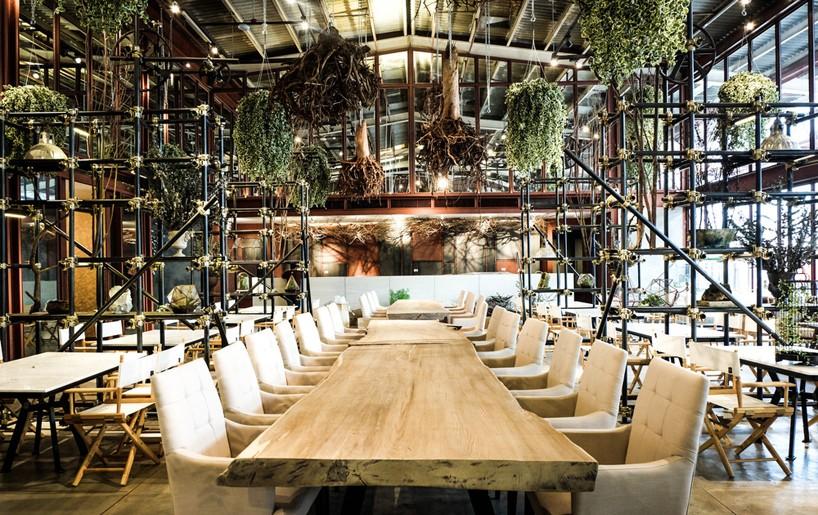 hypothesis-vivarium-restaurant-bangkok