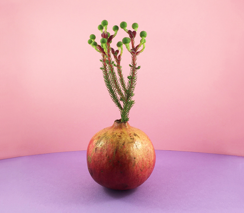 food-design-fruit-vases
