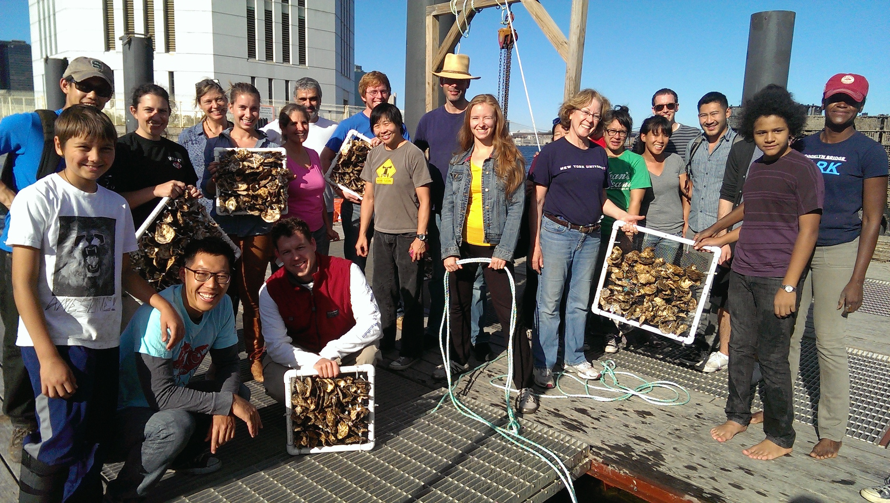 billion-oyster-project-volunteers