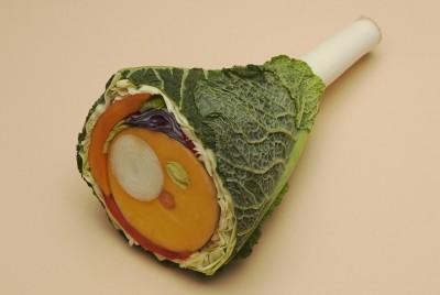 Sarah_Illenberger-On-Vegetarianism-MOLD-Snacks