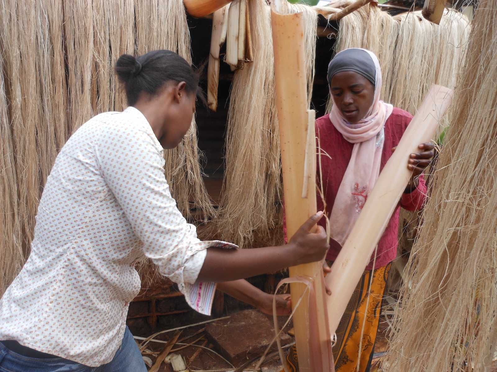 Sustainable Health Enterprise is locally manufacturing sanitary pads from banana fibers.