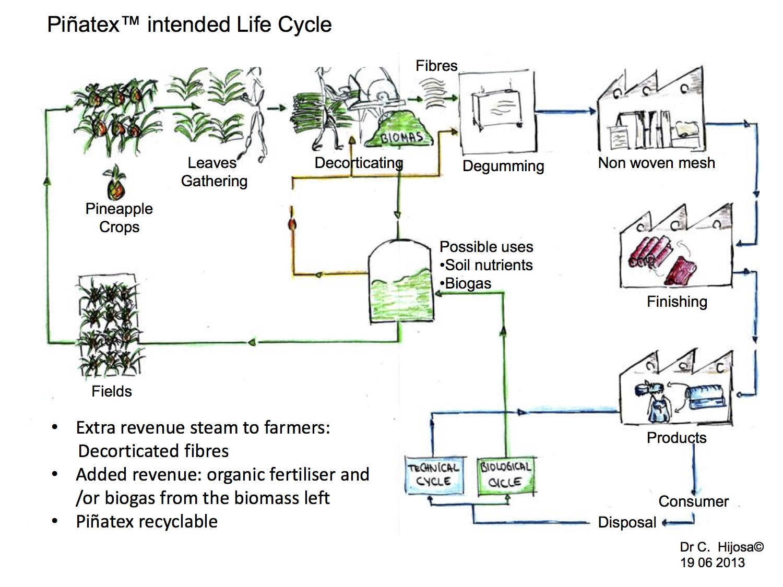 pinatex-life-cycle-analysis