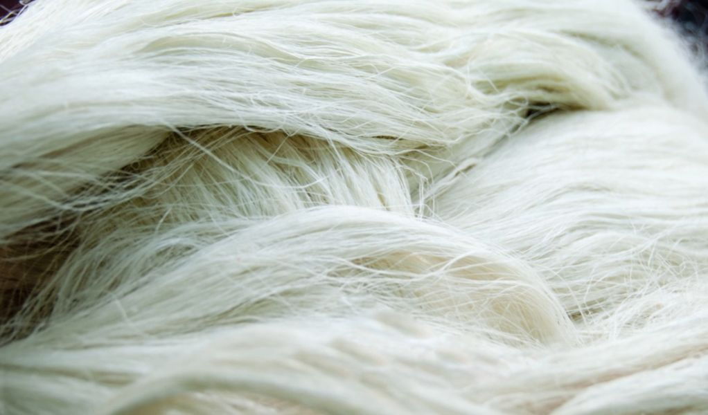 pintaex-fibers
