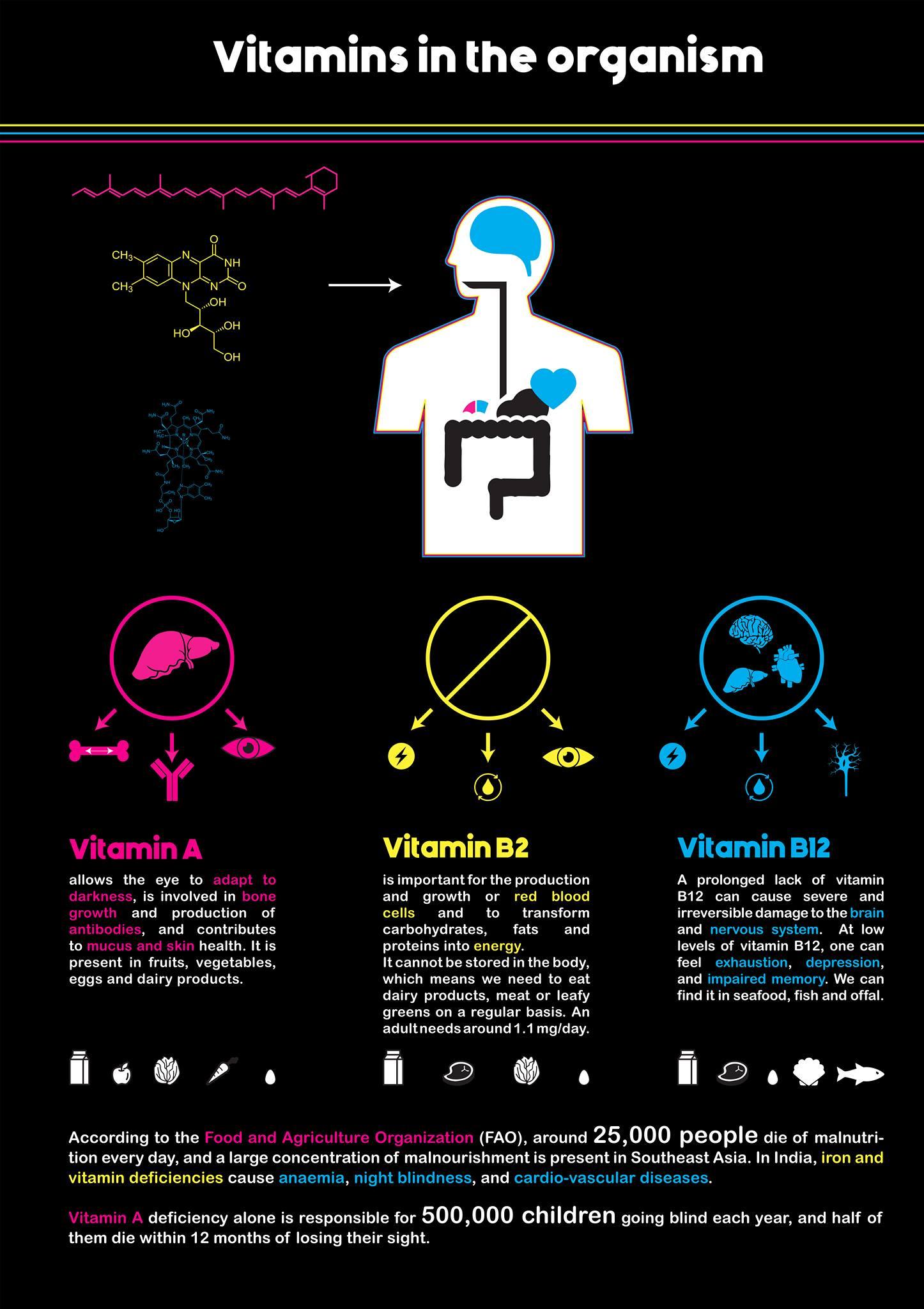 unibiome-vitamins-chart