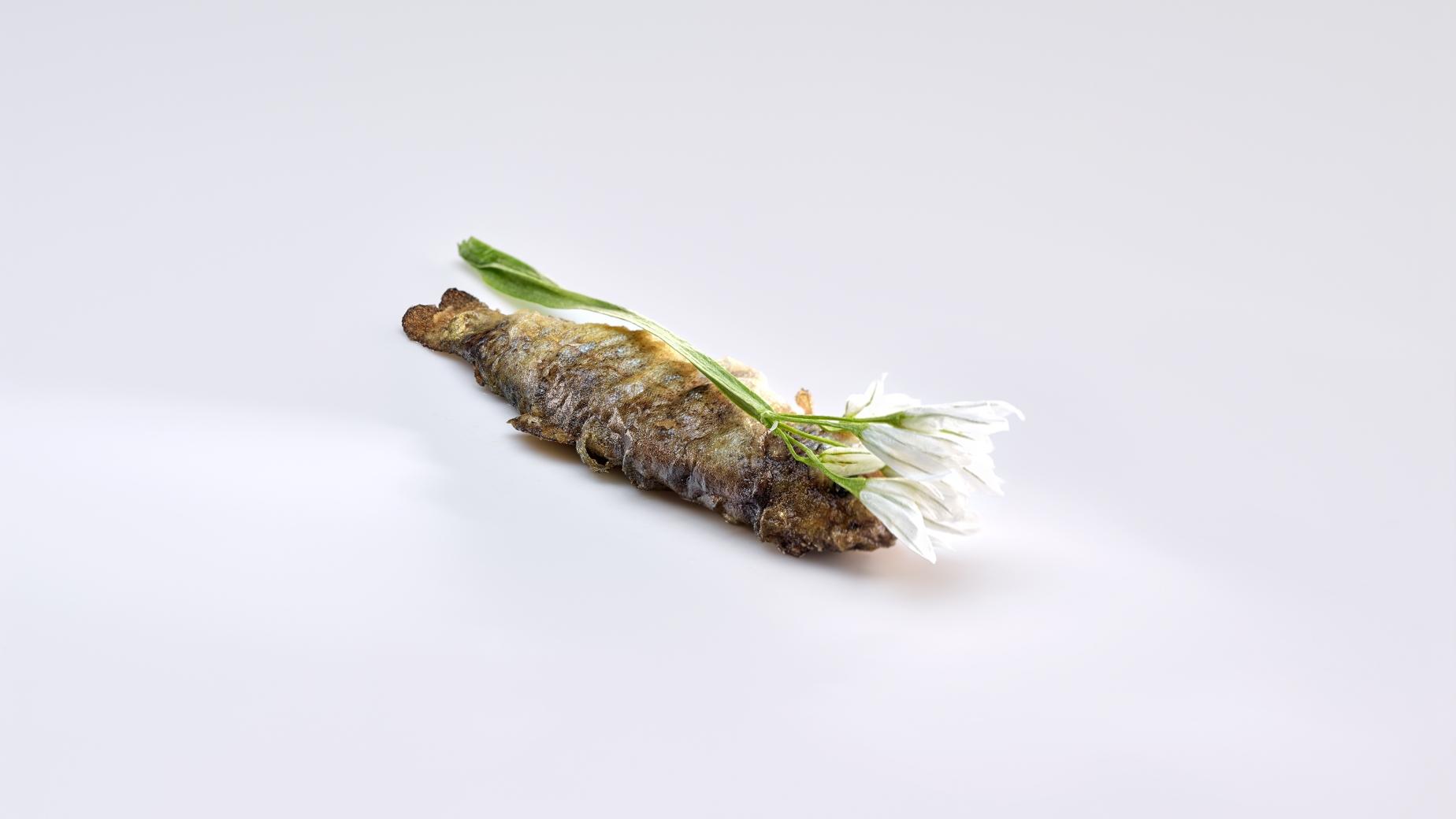 mugaritz-trout