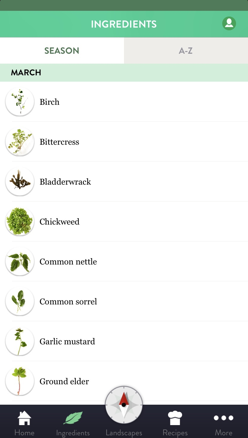 Renee Redzepi's foraging app, VILD MAD, shows what is in season.